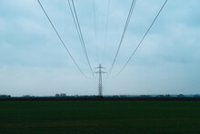 Powerline In Field