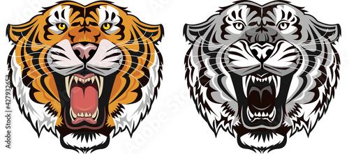 Tela Tiger Face