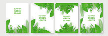 Green Summer Background With Tropical Papercut Leaves. Collection Of Vertical Summer Backgrounds With Frames Or Borders Made Of Green Tropical Palm Leaves Or Jungle Exotic Foliage And Place For Text.