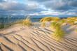 Sand dunes on the beach, North Sea coast, Germany