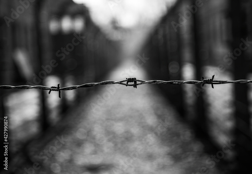 Fotografia, Obraz Holocaust