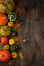 Various Decorative Pumpkins. Autumn Concept