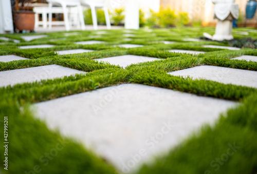 Murais de parede Astro turf with paver patio