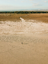 View Of A Person Walking On Sand