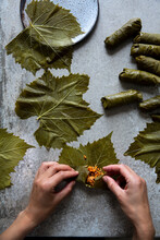 Koupepia With Hands Stuffing Vine Leaves