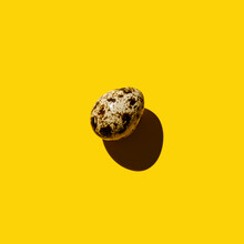 Quail Egg On Yellow Background