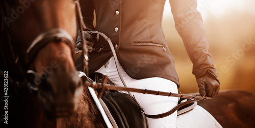 A rider in a black suit and leather gloves sits on a bay horse, holding the bridle rein in his hands on a sunny day Fotobehang