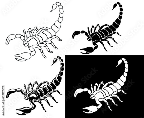 Vászonkép Graphic scorpion isolated on white background, vector illustration for tattoo an