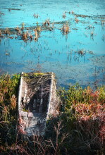 Abandoned Wooden Boat Filled With Mud And Vegetation Sunken On Lake Shore With Turquoise Water In Background.