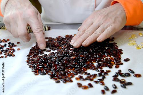 Female hands sort amber blanks for beads on table Tapéta, Fotótapéta