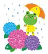 傘を差したカエルと紫陽花 梅雨の季節のイラスト