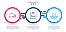 Set Line Hedgehog, Dog Bone And Octopus. Business Infographic Template. Vector