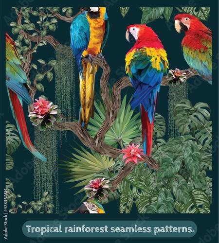 Fototapeta premium Seamless patterns Amazon tropical rainforest and macaw birds.