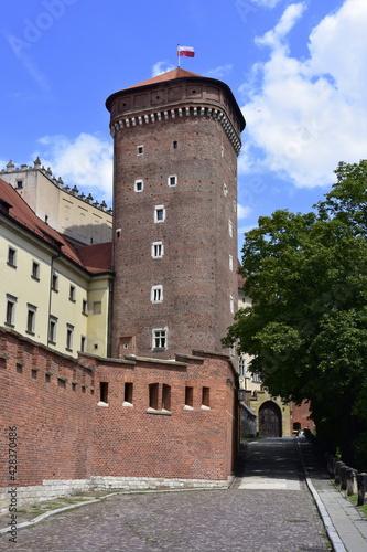 Wawel, Zamek Królewski na Wawelu, Kraków, zabytki, - fototapety na wymiar