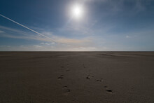 Footprints On The Sandy Beach Gleaming Under The Sunrays In Sankt Peter-Ording