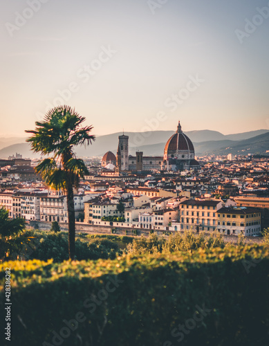Papel de parede Florence Panoramic View with soft afternoon light in summer from Piazzale Michelangelo