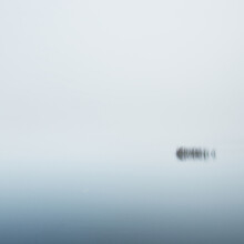 A View Of The Forest Lake In A Thick White Fog. Symmetry Reflections On The Water. Plants Close-up. Misty Autumn Landscape. Dark Fairytale. Germany