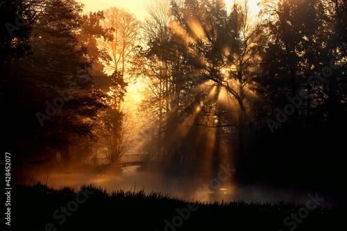 Jesienny poranek - fototapety na wymiar