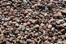 Pebbles On A Coastal Beach Location For Background