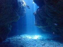 Okinawa's Blue Sea And Caves 沖縄の青い海の洞窟ダイビング水中写真