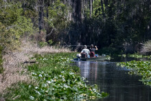 Two Men In A Flat Bottomed Jon Boat Fishing A Narrow Channel In The Okefenokee Swamp In The State Of Georgia, USA