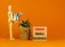 Grow Small Business Symbol. Wooden Blocks With Words 'grow Small Business'. Wooden Manequin, House Plant, Miniature Watering Can. Beautiful Orange Background. Business Concept, Copy Space.