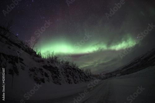 Canvastavla Nice polar lights shot in winter