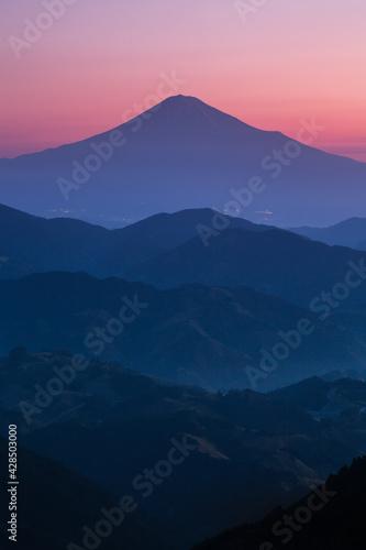 Fotografia 静岡市清水区吉原夜明けの富士山と茶畑