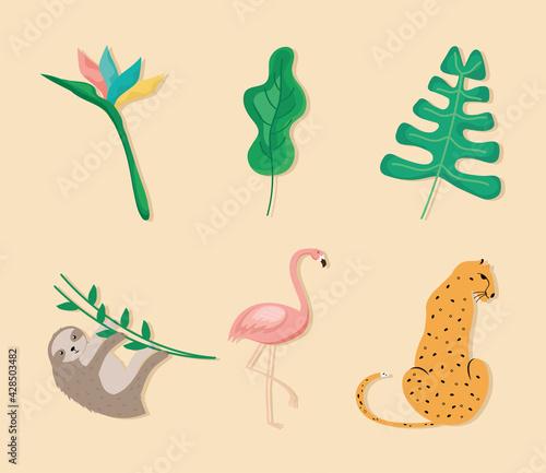 Fototapeta premium tropical three animals