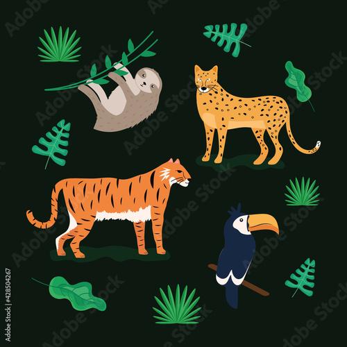 Fototapeta premium tropical animals around