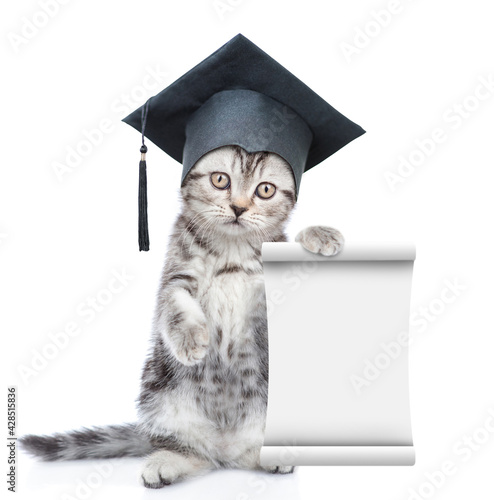 Fotografie, Tablou Graduated cat standing on hind legs and shows empty list