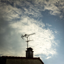 Birds On A Tv Antenna, France