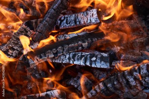 Fotografie, Obraz Burning firewood flame, close-up. Fire embers