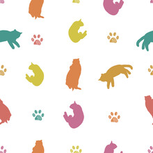 Colorful Cats Silhouette And Paw Prints Pattern