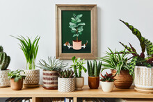 Stylish Composition Of Home Garden Interior With Mock Up Poster Frame, Filled A Lot Of Beautiful Plants, Cacti, Succulents, Air Plant In Different Design Pots. Home Gardening Concept. Template.