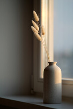 Vase Of Fluffy Dried Flowers On Window Sill At Sunset. Scandinavian Style Home Decor.