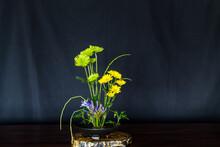 Ikebana , Japanese Flower Arrangement, Simply Putting Flowers In A Container.