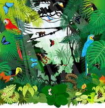 Vector Brazil Rainforest Jungle Illustration With Parrot Macaw Ara, Toucan, Anaconda, Hummingbirds And Butterflies
