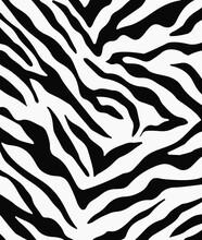 Zebra Pattern Design Textile