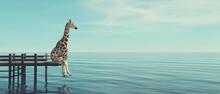 Giraffe Sea