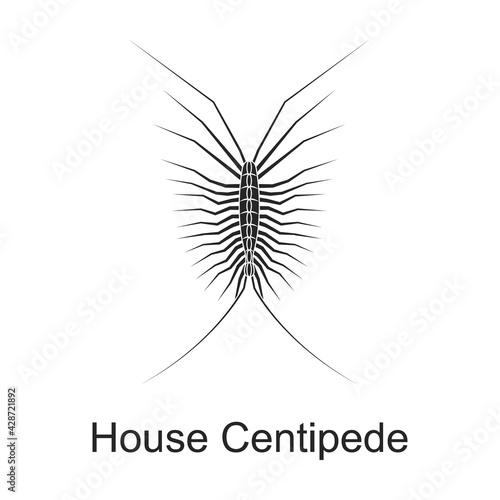 Cuadros en Lienzo House centipede vector black icon