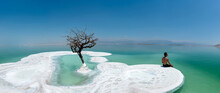 A Man And A Lonely Tree On Salt Island In Dead Sea, Israel.