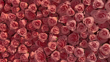 Elegant, Red Wall Background With Roses. Beautiful, Floral Wallpaper With Colorful, Vibrant Flowers. 3D Render