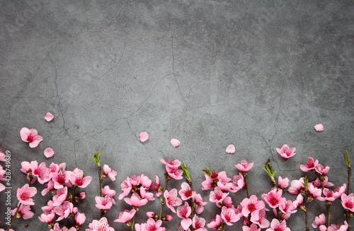 Spring or summer flower composition, still life, banner, minimal holiday concept Fototapeta