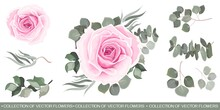 Vector Set With Red Roses And Various Plants. Pink Roses, Eucalyptus, Herbs, Various Plants And Leaves. All Elements Are Isolated.