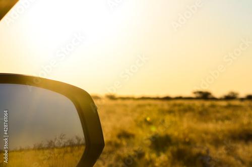 Obraz Car side mirror on safari - fototapety do salonu
