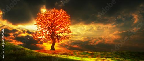 a mysterious magic tree (3d rendering) - fototapety na wymiar