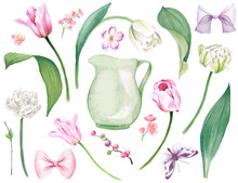 Lush Pink And White Tulips, Leaves, Tiny Flowers