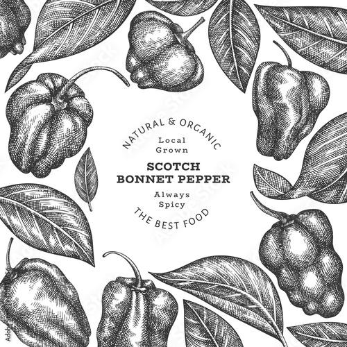 Carta da parati Hand drawn sketch style scotch bonnet pepper banner