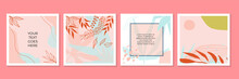 Creative Cover Design Vector For Instagram Story Template, Social Media Posts, Story And Photos, Editable Collection Backgrounds With Tropical Floral Leaf